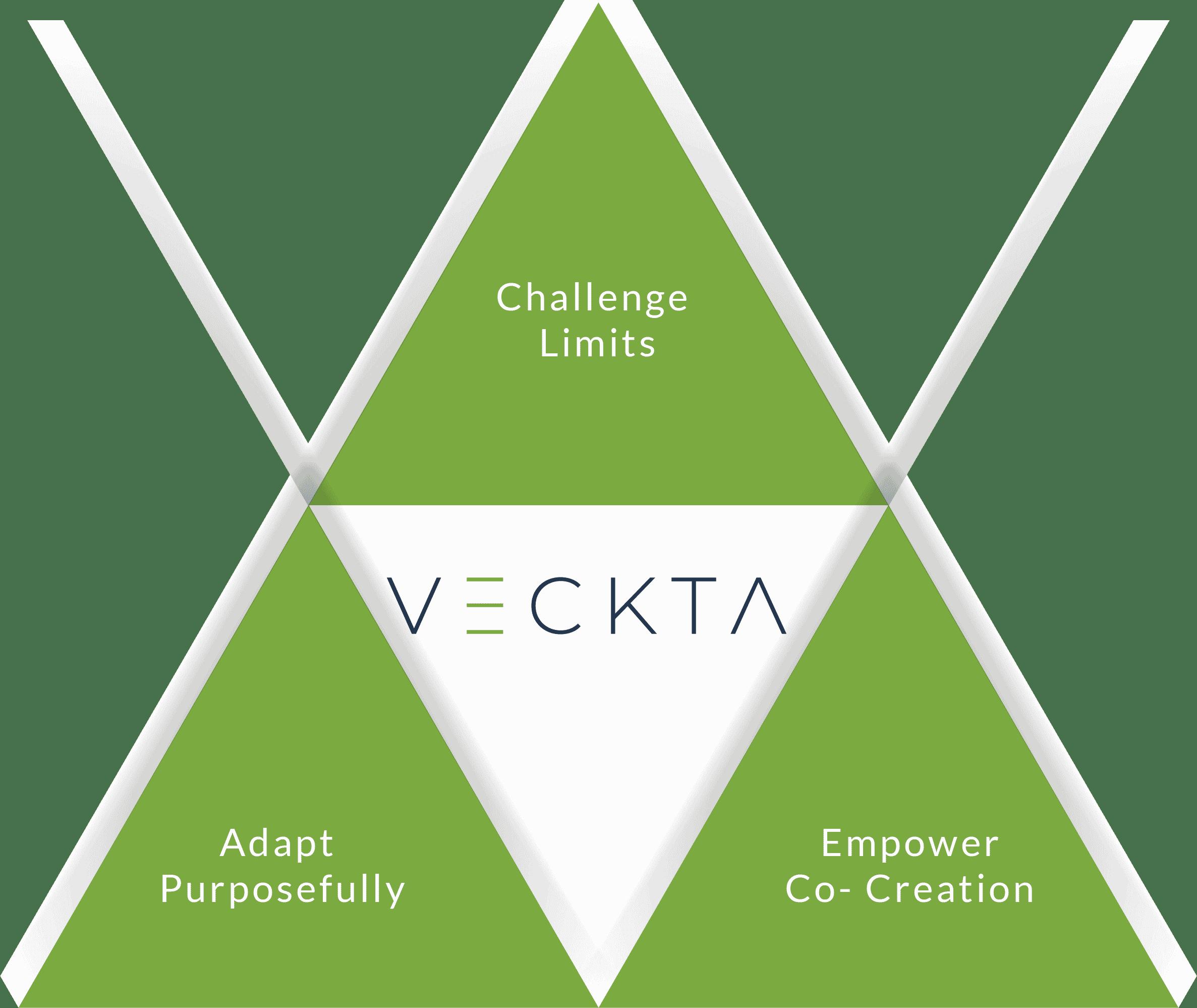 VECKTA Values