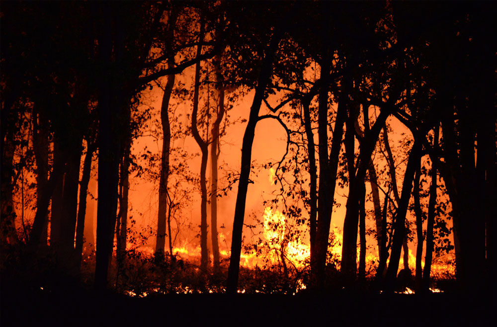 Microgrids In Wildfire Areas