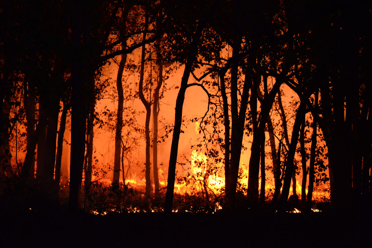 VECKTA and Microgrids In Wildfire Areas