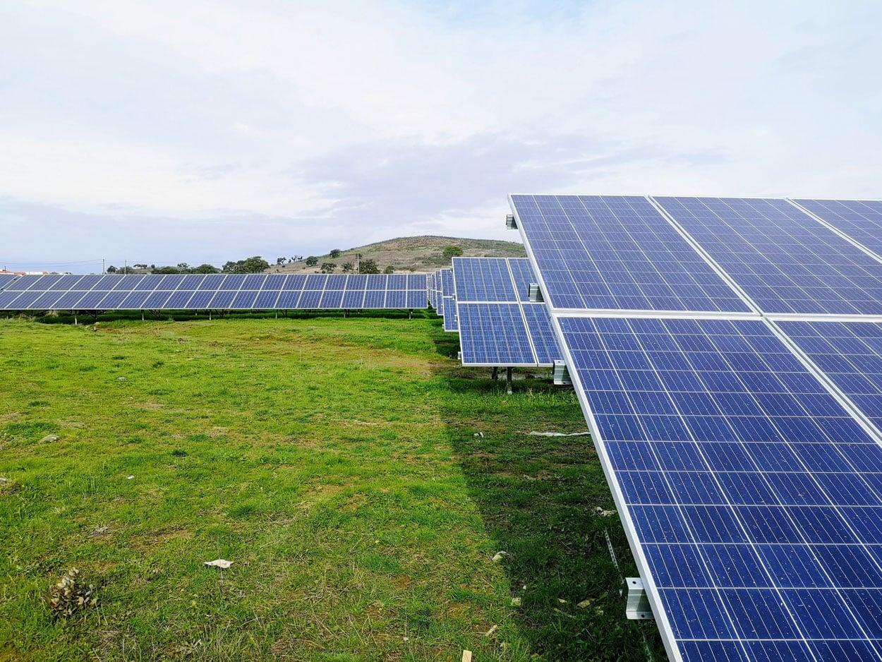 Can we live a zero-carbon zero-extraction lifestyle? VECKTA News