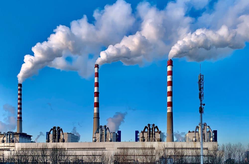 VECKTA Talks Carbon Emissions